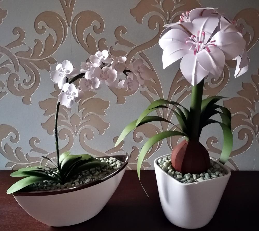 Amaryllis und Orchidee aus Papier