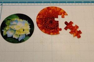 PuzzleFoto3 (590x393)