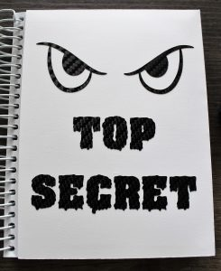 Einsteckhülle - Top Secret
