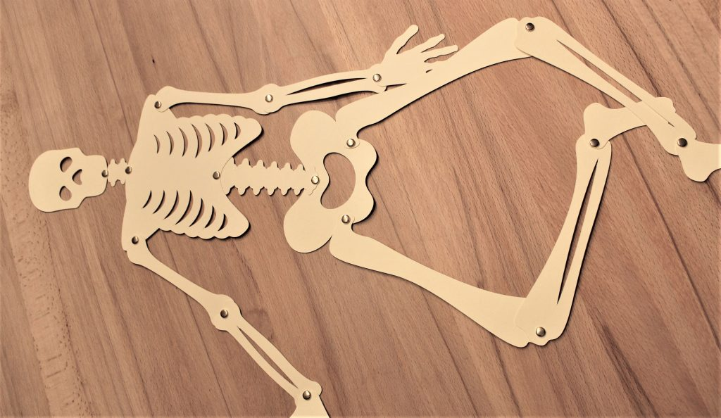 Skelett fertig